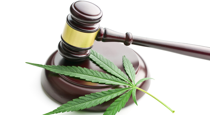All You Need To Know About Cannabis Laws In Alberta