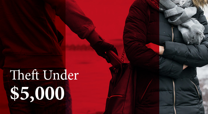 "What Is A ""Theft Under $5,000"" Offence? How To Deal With It"