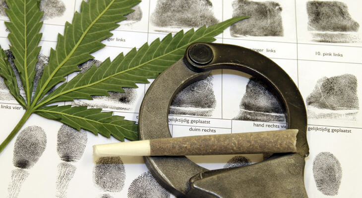 How To Fight Drug Possession Charges In Canada