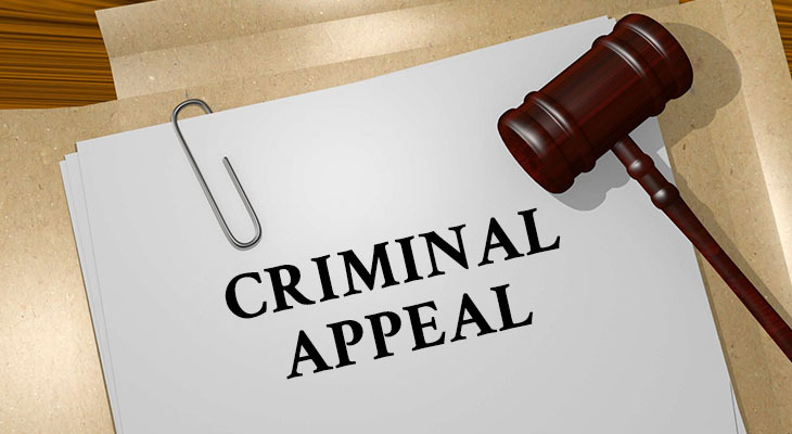 Things You Should Know About A Criminal Appeal